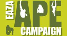 EAZA APE Campaign