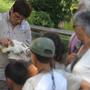 visites guidées au zoo de yon