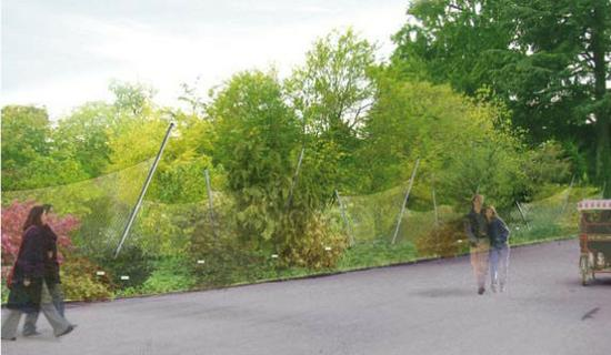 clôture 1