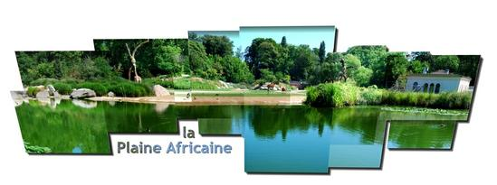 la plaine africaine