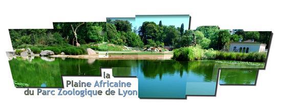 la plaine africaine du par zoologique de Lyon
