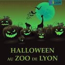 Halloween au zoo!